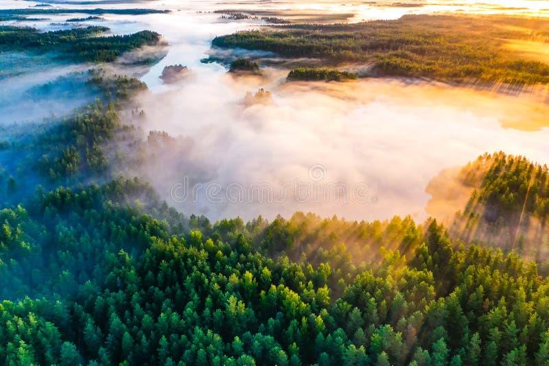 Conceito do contraste da temperatura Manhã ensolarada, paisagem aérea A névoa grossa cobre a floresta e lagos verdes imagens de stock