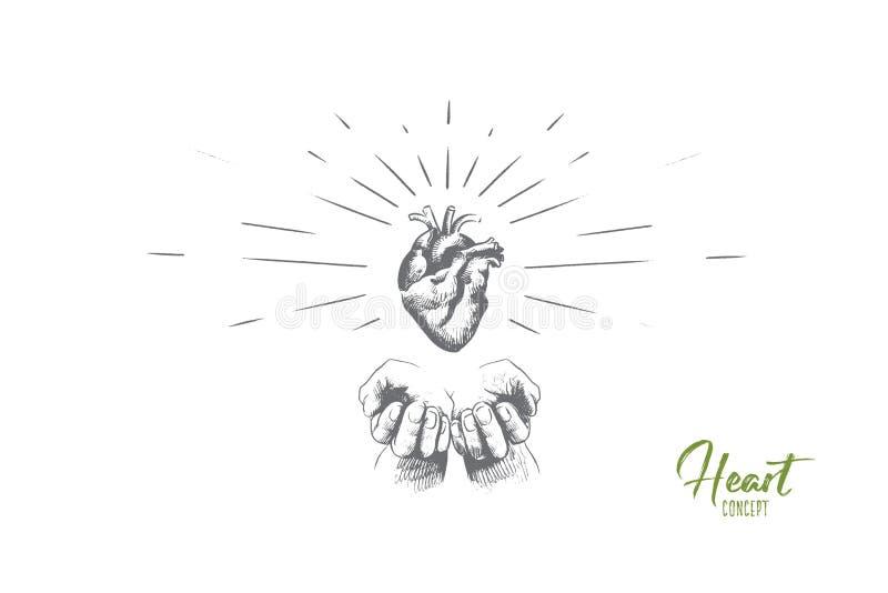 Conceito do coração Vetor isolado tirado mão ilustração royalty free