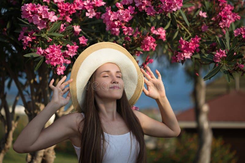 Conceito do curso do verão Chapéu vestindo da jovem mulher com árvore do oleandro imagens de stock