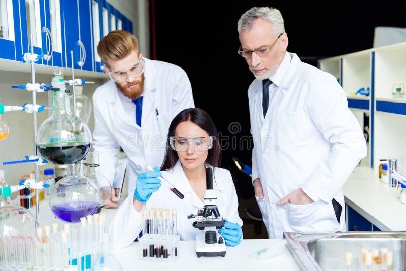 Conceito do desenvolvimento de equipas Laboratório militar secreto Três cientistas são fotografia de stock