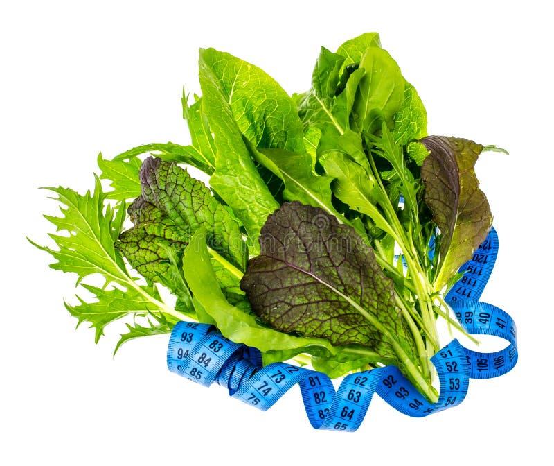 Conceito do estilo de vida saudável, da aptidão e do alimento dietético fotografia de stock royalty free