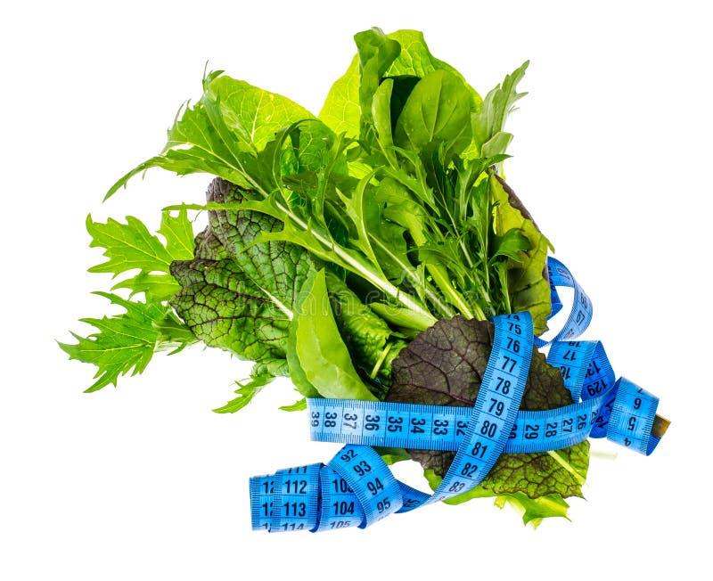 Conceito do estilo de vida saudável, da aptidão e do alimento dietético imagens de stock