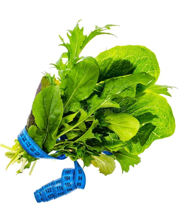 Conceito do estilo de vida saudável, da aptidão e do alimento dietético imagem de stock