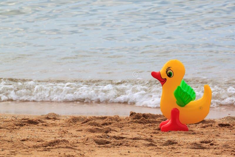 Conceito do feriado da família com o pato de borracha que anda na praia imagem de stock
