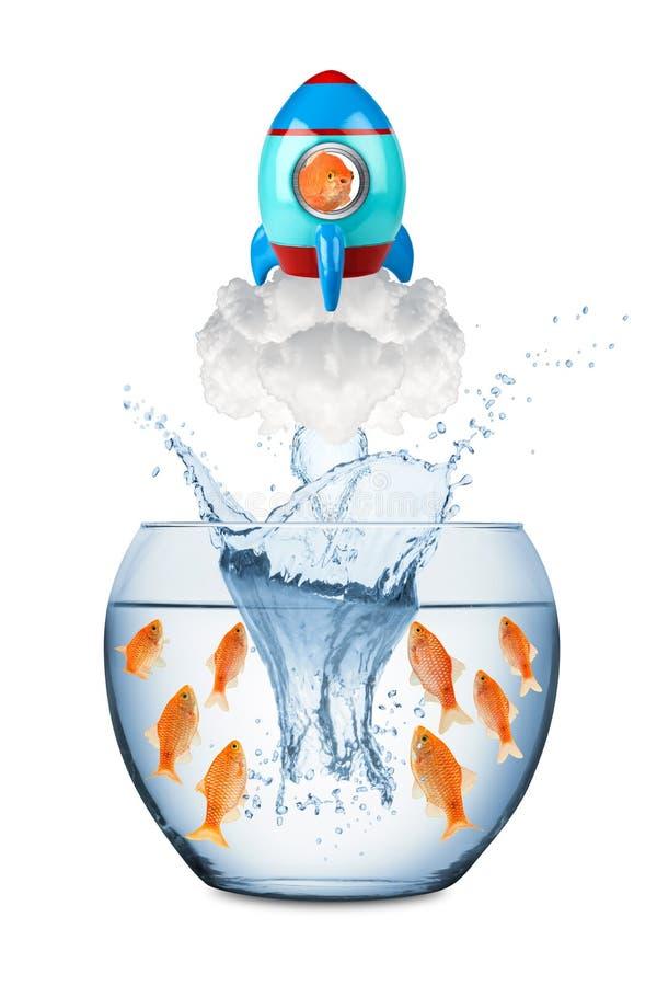 Conceito do foguete dos peixes imagem de stock royalty free