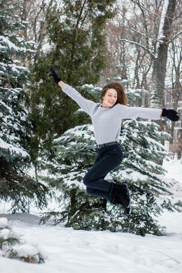 Conceito do inverno que aprecia o conceito nevado do tempo fotografia de stock royalty free
