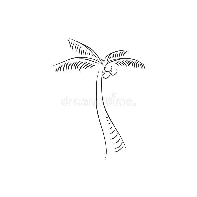 Conceito do logotipo das ilustrações da silhueta da árvore de coco ilustração stock