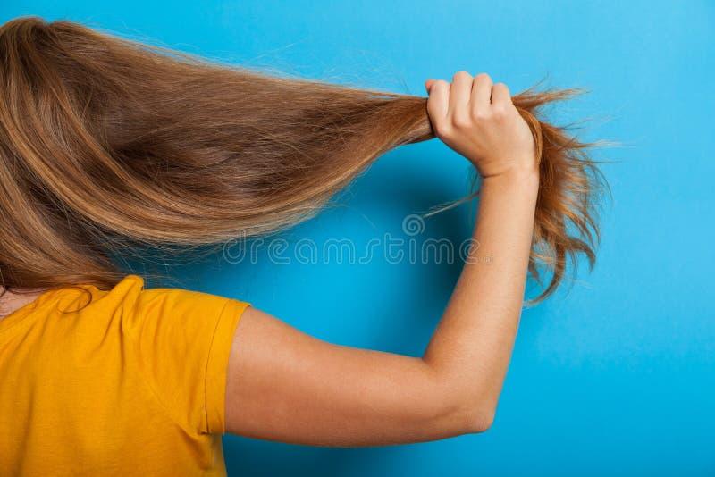 Conceito do problema da queda de cabelo, cabelo danificado seco imagens de stock