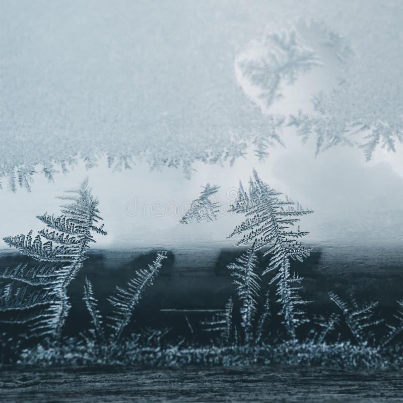Conceito do tema do mundo de fantasia da estação do inverno: Imagem macro do conceito do tema do mundo de fantasia da estação de  imagem de stock royalty free