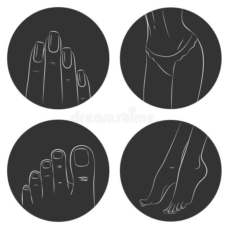 Conceito do tratamento de mãos, do pedicure e do bodycare Grupo do ícone ilustração do vetor