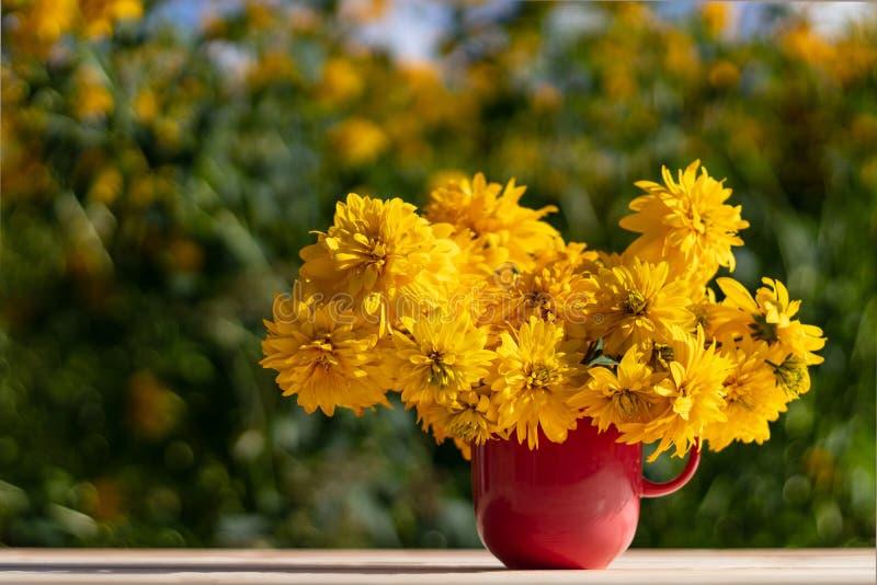 Conceito do verão As flores amarelas bonitas estão em um copo cor-de-rosa-vermelho fotos de stock royalty free
