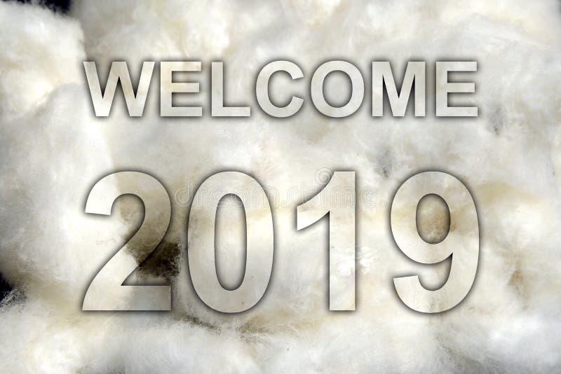 Conceito dos cumprimentos do ano novo 2019 da boa vinda foto de stock royalty free