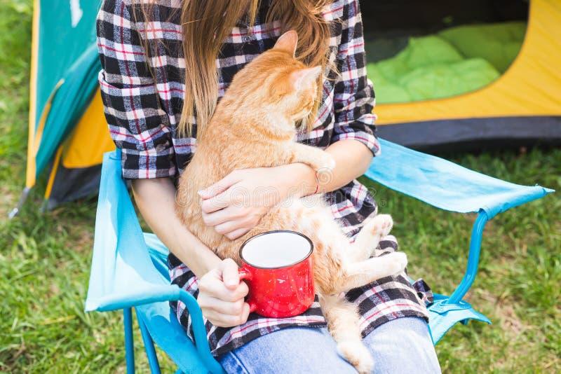 Conceito dos povos, do turismo e da natureza - mulher nos óculos de sol que afagam um gato que senta-se perto da barraca fotos de stock royalty free