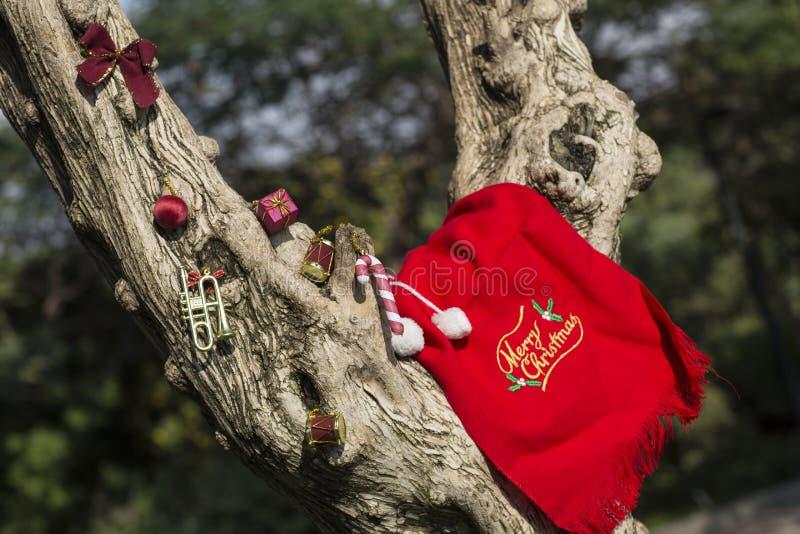 Conceito dos presentes da árvore do Feliz Natal e do ano novo feliz imagens de stock royalty free
