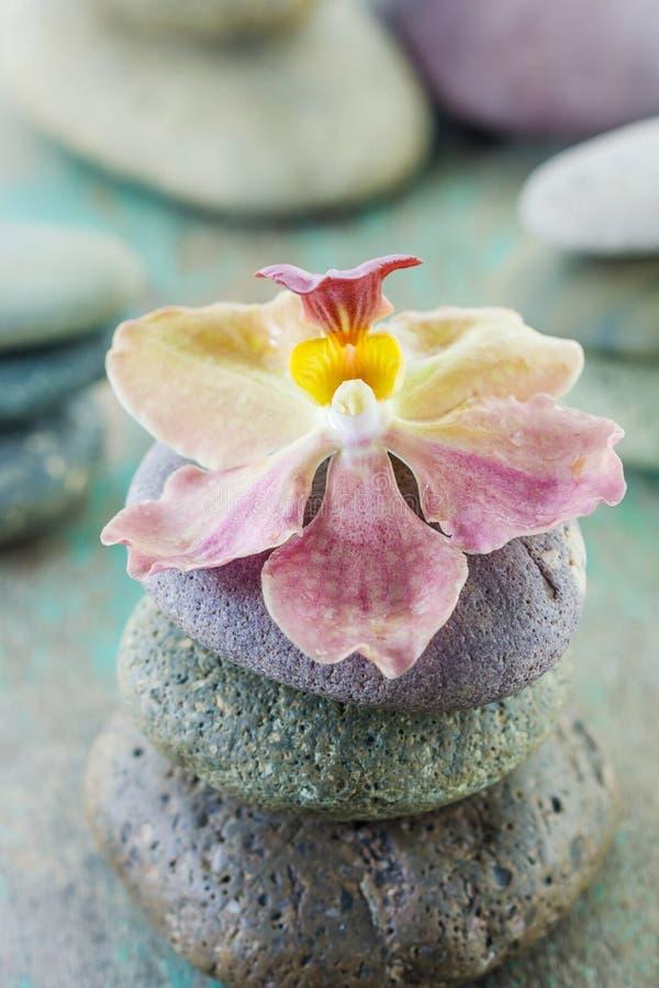 Conceito dos termas com pedras e orquídea do zen fotos de stock