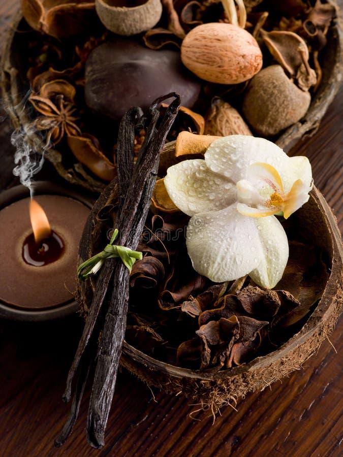 Conceito dos termas de Aromatherapy fotos de stock royalty free