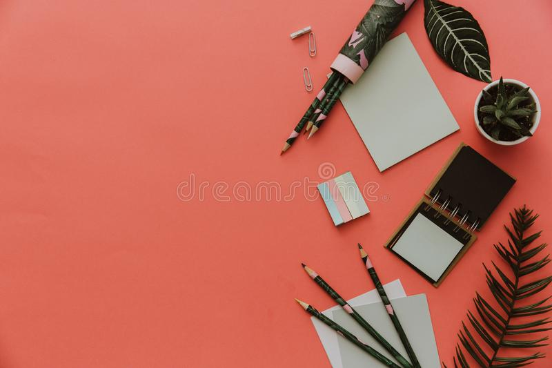 Conceito estacionário, foto lisa da configuração das tesouras, lápis, papel no fundo cor-de-rosa fotografia de stock royalty free