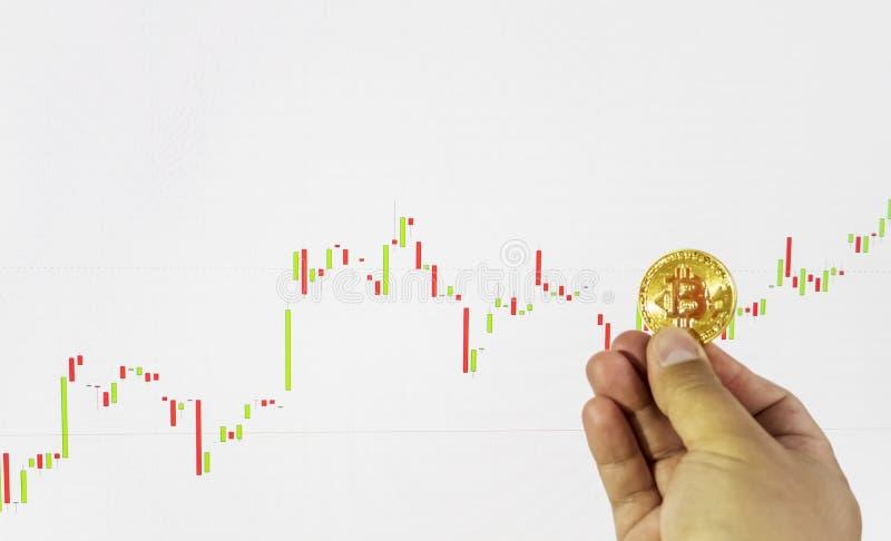 Conceito financeiro do crescimento com bitcoins dourados foto de stock