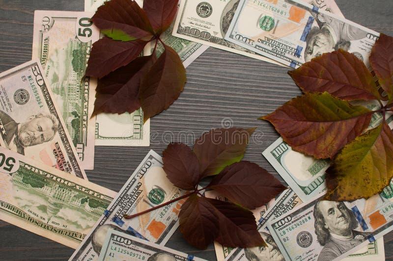 Conceito financeiro em dólares e em objetos naturais fotos de stock royalty free