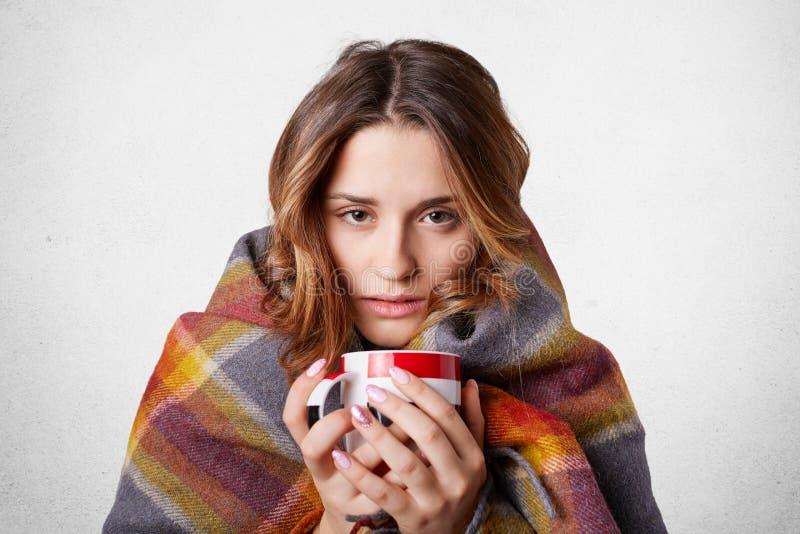 Conceito frio da doença do inverno A mulher bonita de congelação envolvida na cobertura quadriculado morna da manta, bebida quent imagens de stock royalty free