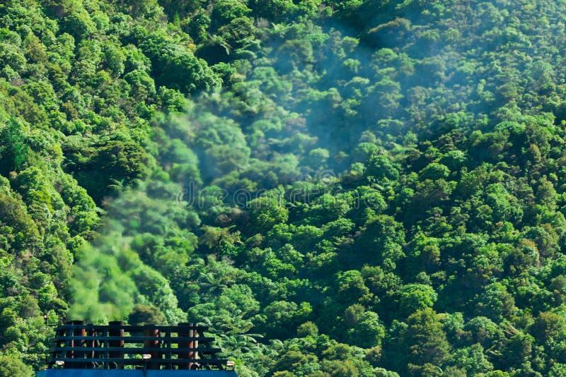 Conceito, fumo e floresta da poluição do gás do clima imagem de stock royalty free