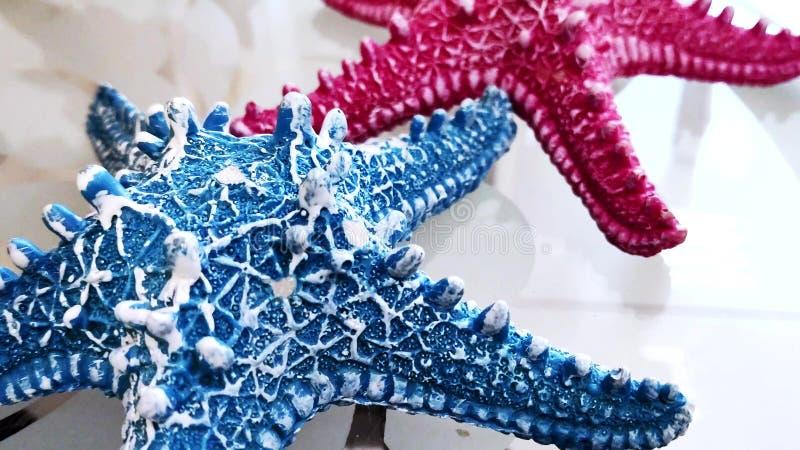 Conceito home da decora??o close-up, estrela do mar dois azul e cor-de-rosa em uma tabela de vidro transparente imagem de stock royalty free