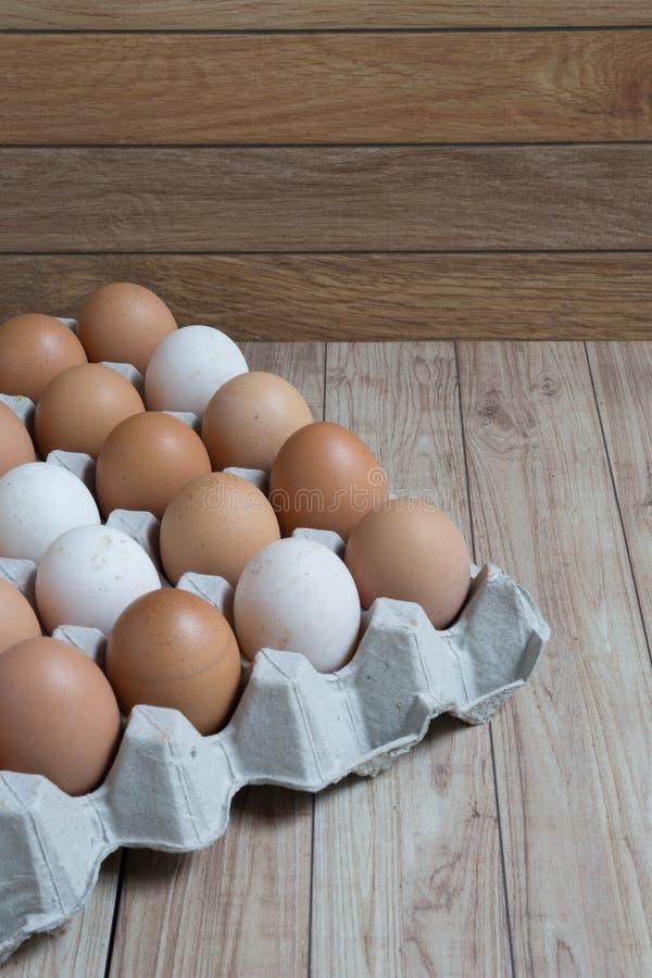Conceito homogêneo: Os tipos diferentes dos ovos ficam junto o homo imagens de stock