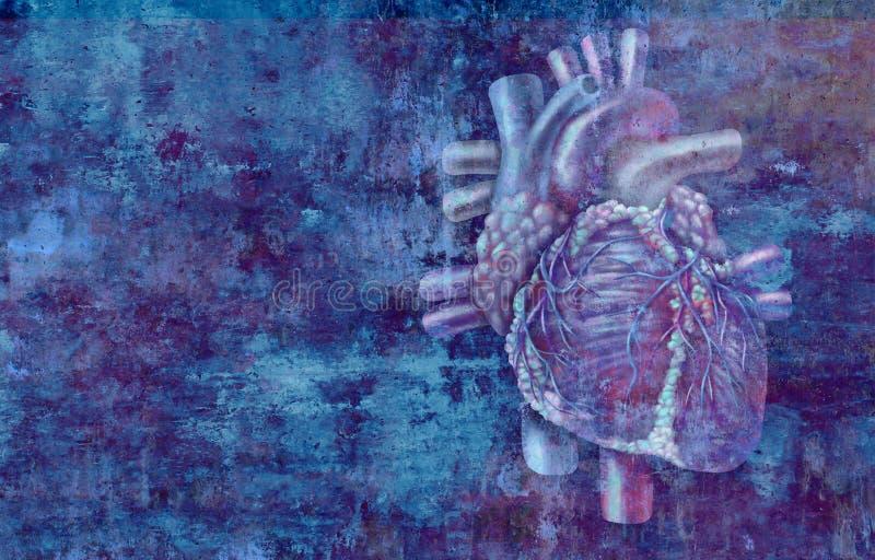 Conceito humano do coração ilustração royalty free