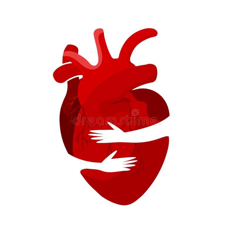 Conceito médico de um órgão vermelho do coração em um abraço Pode ser usado para cartazes, ícones, bandeiras da Web e cartões ilustração stock