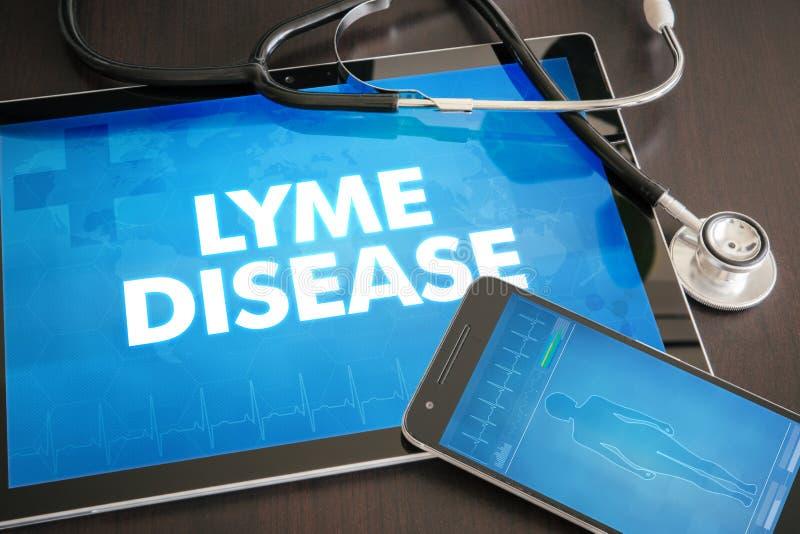 Conceito médico do diagnóstico da doença de Lyme (doença infecciosa) imagens de stock