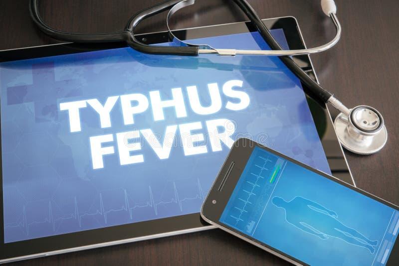 Conceito médico do diagnóstico da febre de tifo (doença infecciosa) foto de stock royalty free