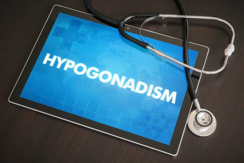 Conceito médico do diagnóstico do hipogonadismo (doença da glândula endócrina) em Ta imagem de stock