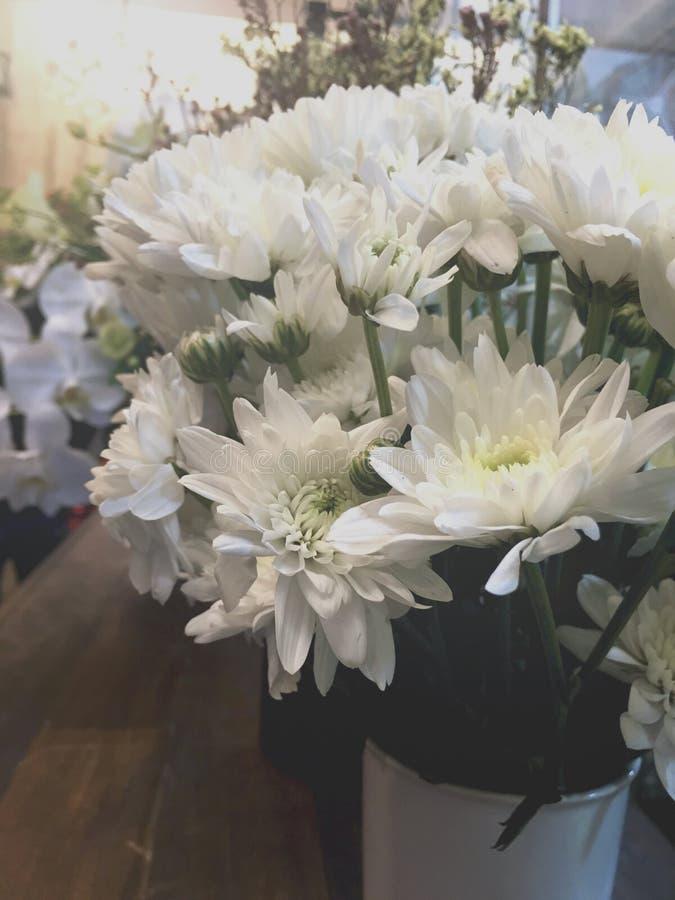 Conceito macio do verão do presente do grupo do ramalhete da flor da flor imagens de stock royalty free