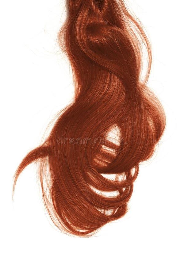Conceito mau do dia do cabelo Por muito tempo, hena, rabo de cavalo bagunçado imagens de stock