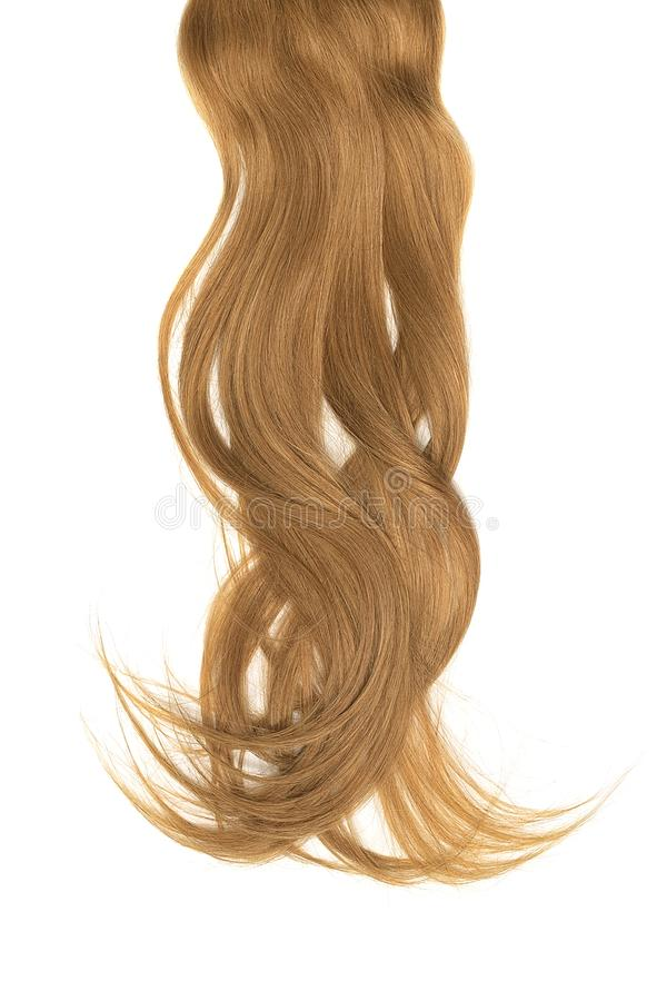 Conceito mau do dia do cabelo Rabo de cavalo longo, marrom, bagunçado imagens de stock