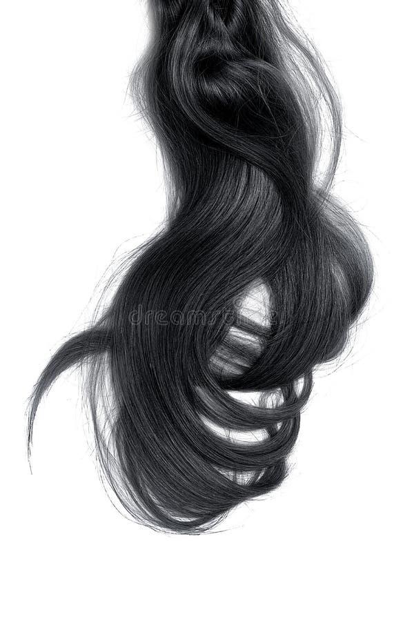 Conceito mau do dia do cabelo Rabo de cavalo longo, preto, bagunçado imagens de stock