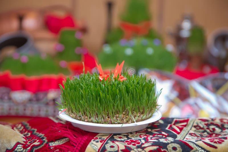 Conceito nacional da celebração do ano novo da mola do feriado de Novruz Azerbaijão, semeni da grama do trigo Um cerco seminal em imagem de stock royalty free