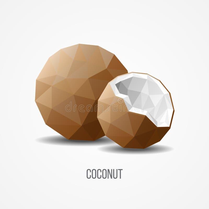 Conceito natural doce colorido do fruto do coco ilustração do vetor