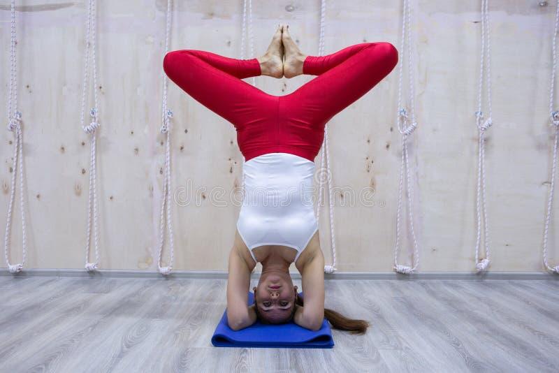 Conceito praticando da ioga da mulher atrativa nova do iogue, estando na variação do exercício de Pincha Mayurasana, pose do pino imagem de stock royalty free
