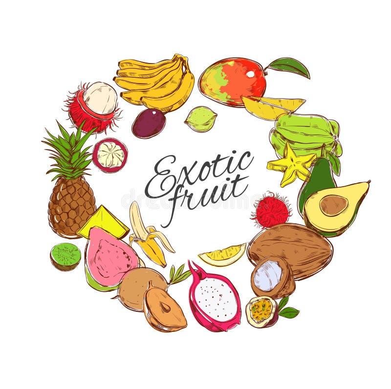 Conceito redondo natural colorido dos frutos tropicais ilustração stock
