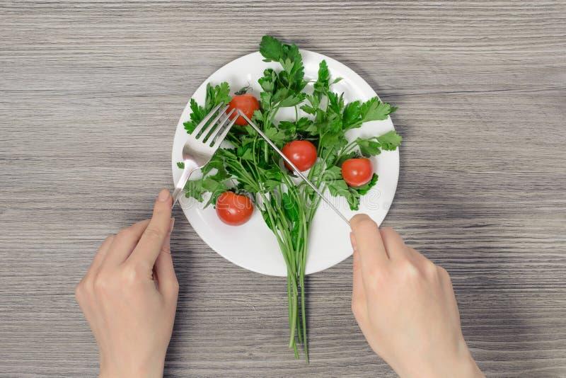 Conceito saudável de dieta dos povos da pessoa do vegetariano do vegetariano comer do emagrecimento da perda de peso Conceito da  fotografia de stock