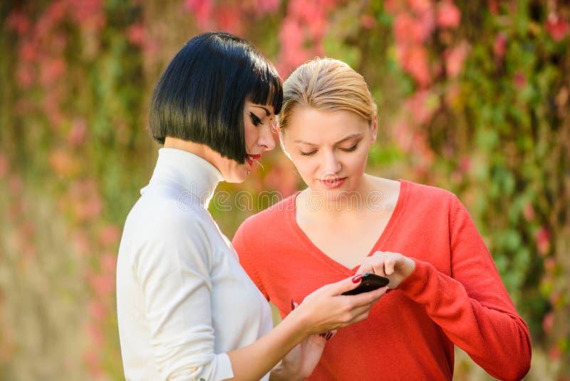 Conceito social das redes Compartilhando da relação Compre em linha Tecnologia moderna Internet surfando Comunica??o em linha Par imagens de stock royalty free