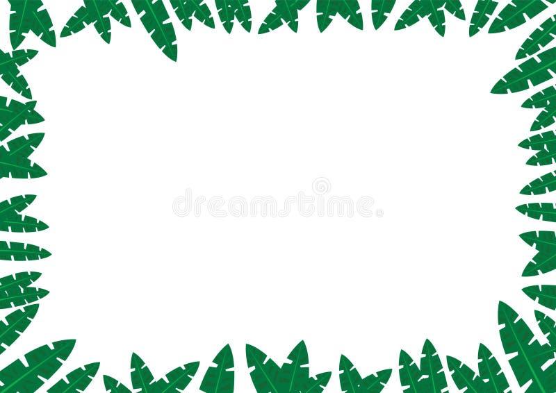 Conceito tropical do frame da selva ilustração do vetor