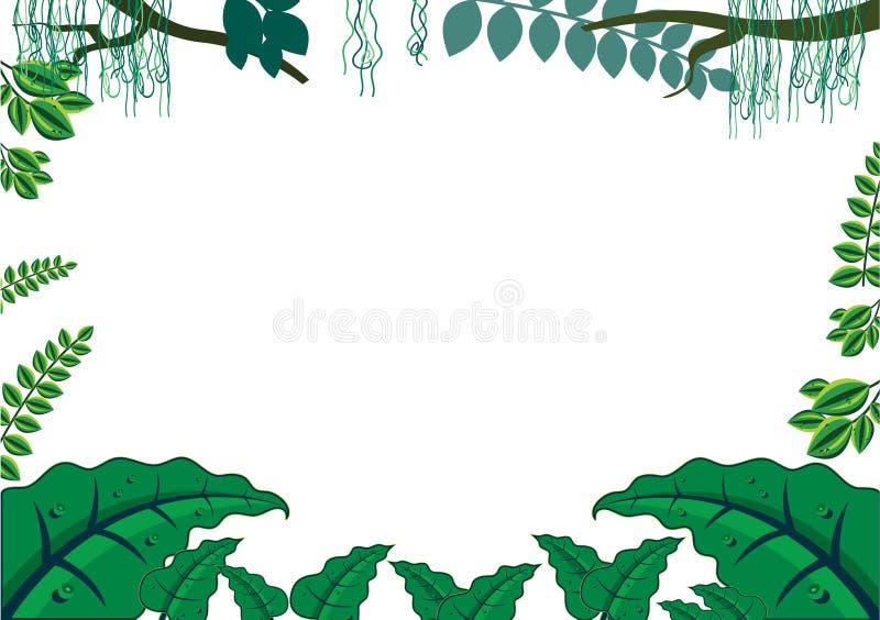 Conceito tropical verde do frame da selva ilustração do vetor