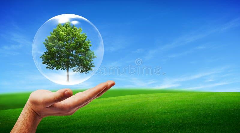 Conceito verde ilustração stock
