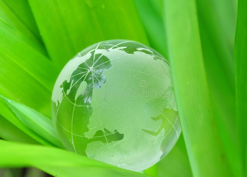 Conceito verde do mundo fotos de stock royalty free