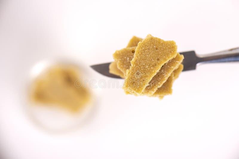 Concentrado del cáñamo extraído de la planta de marijuana aislada fotos de archivo