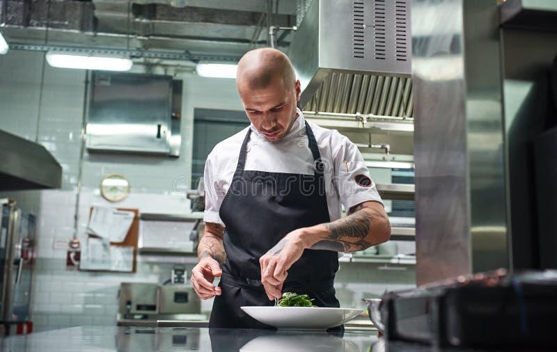 Concentrado en el trabajo Retrato del cocinero profesional hermoso en delantal negro que adorna su plato en el rato de la placa imagen de archivo libre de regalías