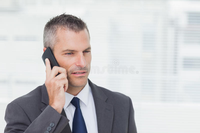 Download Concentrated Businessman Posing While Having A Phone Call Stock Photo - Image of cellphone, professional: 33052712