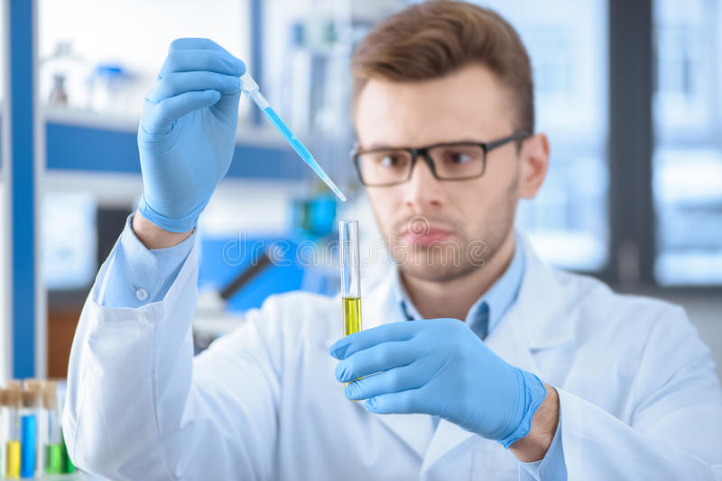 Concentrated chemist in protective gloves making experiment. In lab stock image